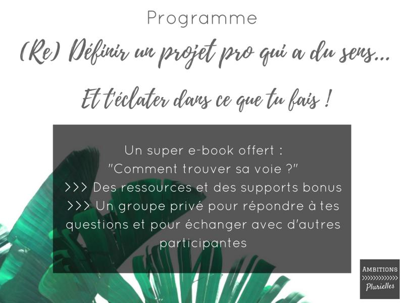 Citation Projet Professionnel Ruc14 Napanonprofits