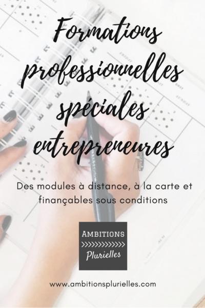 formations professionnelles spéciales entrepreneures