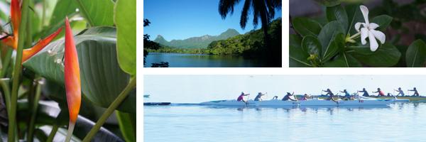 Retour sur mon voyage à Tahiti et ce qui se prépare pour la rentrée